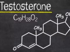 Чем больше секса, тем выше уровень тестостерона?